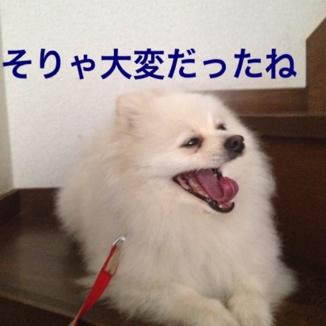 fc2blog_2013052318595137d.jpg