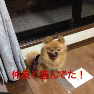 fc2blog_20130525163811ebd.jpg