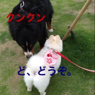 fc2blog_2013052618205616a.jpg