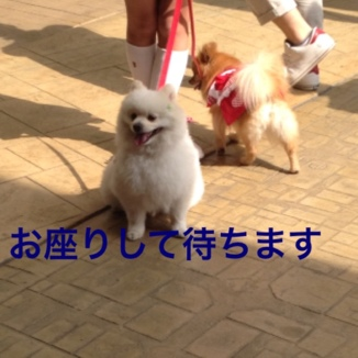 fc2blog_20130526182239462.jpg