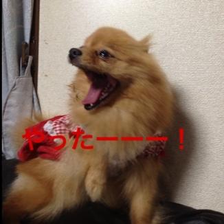 fc2blog_201305312048125e9.jpg