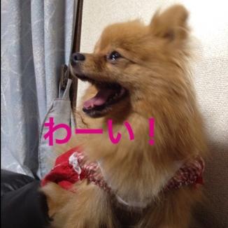 fc2blog_2013053120560682e.jpg