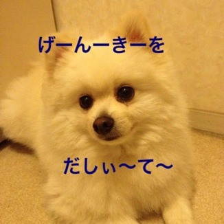 fc2blog_201306032312391db.jpg