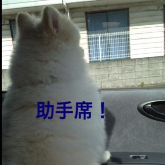 fc2blog_20130604184736c0c.jpg