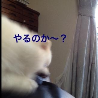 fc2blog_20130605215926e87.jpg