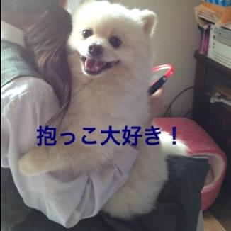 fc2blog_20130607214304953.jpg