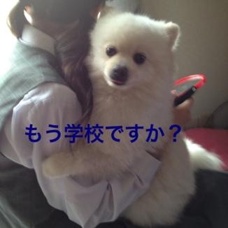 fc2blog_201306072143467e2.jpg