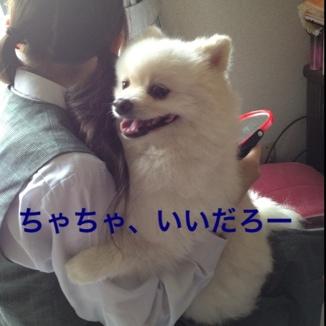fc2blog_201306072144276f8.jpg