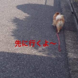 fc2blog_20130609151354f32.jpg