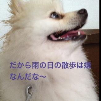 fc2blog_20130612214923ebb.jpg
