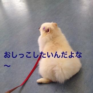 fc2blog_20130618213644af2.jpg