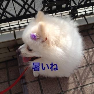 fc2blog_20130622205438a18.jpg