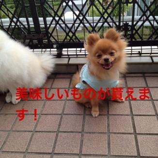 fc2blog_20130624202104c58.jpg