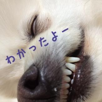 fc2blog_20130627215608f13.jpg