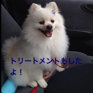 fc2blog_201307051954029c2.jpg