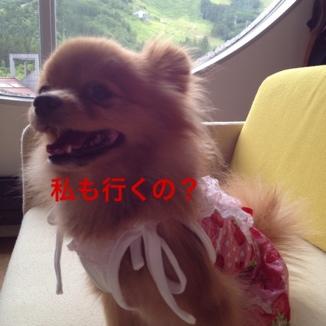 fc2blog_201307222137357db.jpg