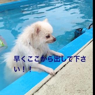 fc2blog_20130723195640e28.jpg