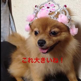 fc2blog_20130726220455fd8.jpg