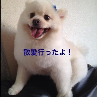 fc2blog_20130728202041b4d.jpg