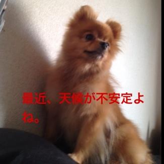 fc2blog_20130730195747291.jpg