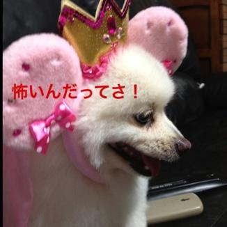 fc2blog_201308022139139ab.jpg