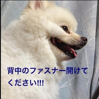 fc2blog_20130811205913eba.jpg