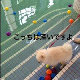 fc2blog_20130814203852911.jpg