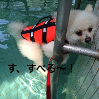 fc2blog_20130819182747f5b.jpg