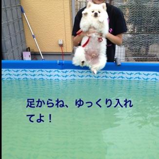 fc2blog_201308231846015b9.jpg