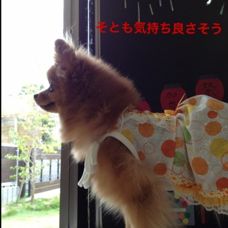 fc2blog_201308241001080f7.jpg