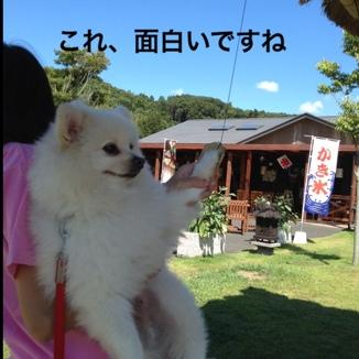 fc2blog_20130828211954f41.jpg