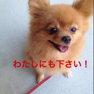 fc2blog_20130831213532b1e.jpg
