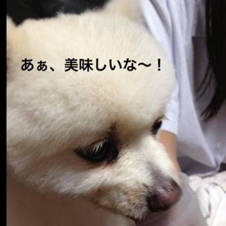 fc2blog_201309201851102ba.jpg