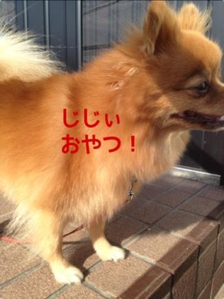 fc2blog_201309281933360ac.jpg