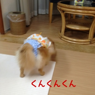 fc2blog_20131005211028727.jpg