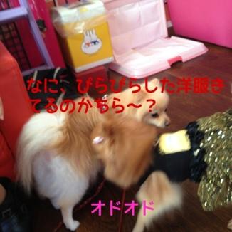 fc2blog_201310162151354ff.jpg