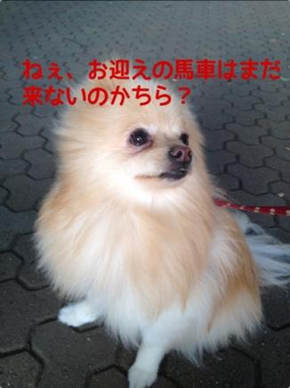 fc2blog_20131018224921642.jpg