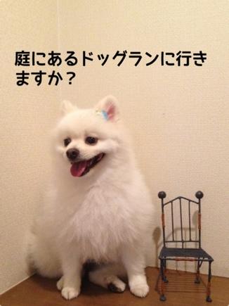 fc2blog_201310212147005d9.jpg