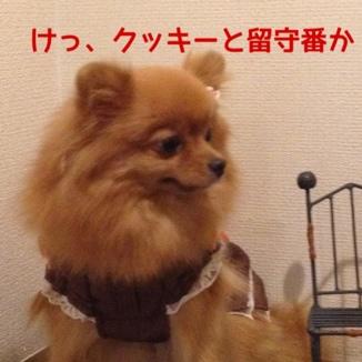 fc2blog_20131021215333743.jpg