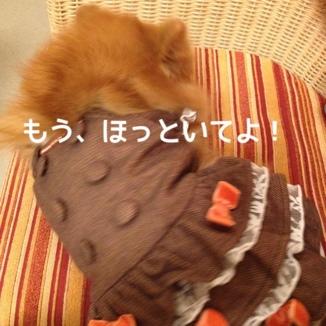fc2blog_20131022213506877.jpg
