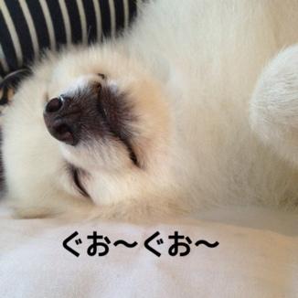 fc2blog_20131023195526c1a.jpg