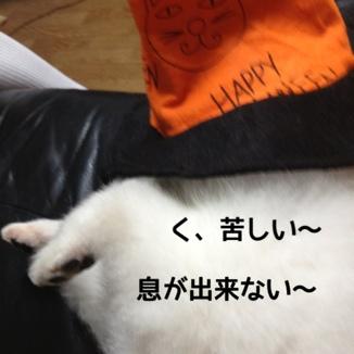 fc2blog_201310271501424e7.jpg