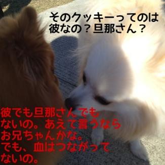 fc2blog_20131126205721c4c.jpg