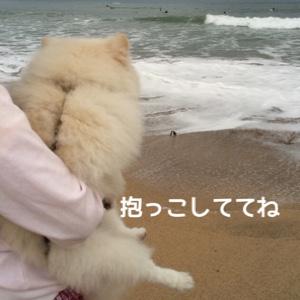 fc2blog_20141028195946b16.jpg