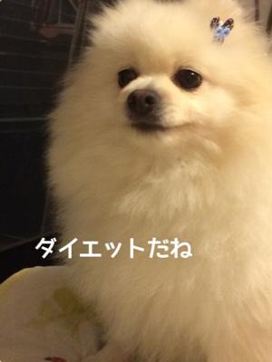 fc2blog_20141111190637a47.jpg