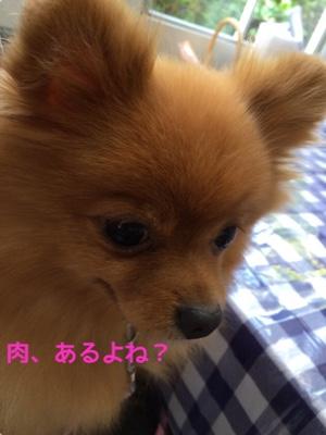 fc2blog_20141125194659b54.jpg