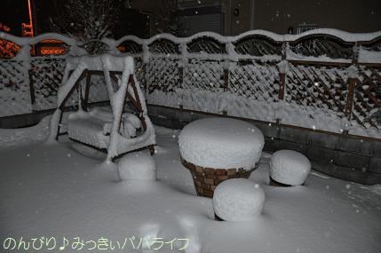 snow2014020805.jpg