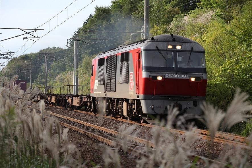 DF107IMG_6802-3.jpg