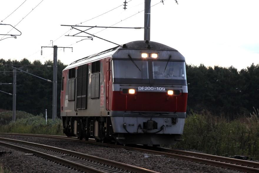 DF109IMG_7126-2.jpg