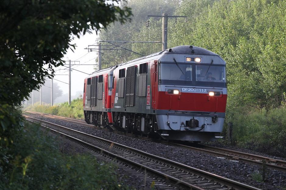 DF117IMG_6621-1.jpg